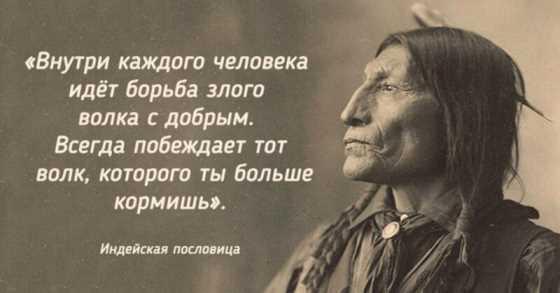 26 мудрых мыслей индейцев